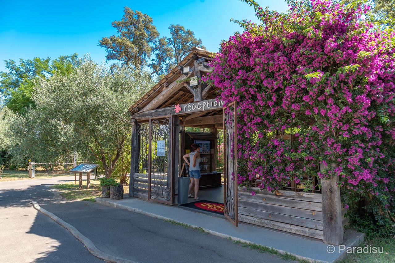 Camping Korsika 17 - Le Campoloro