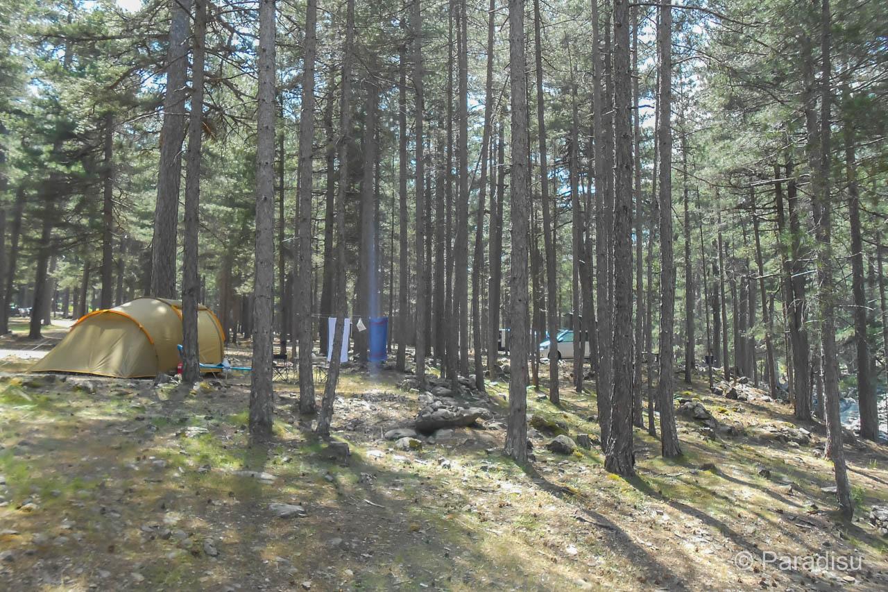 Camping Monte Cinto