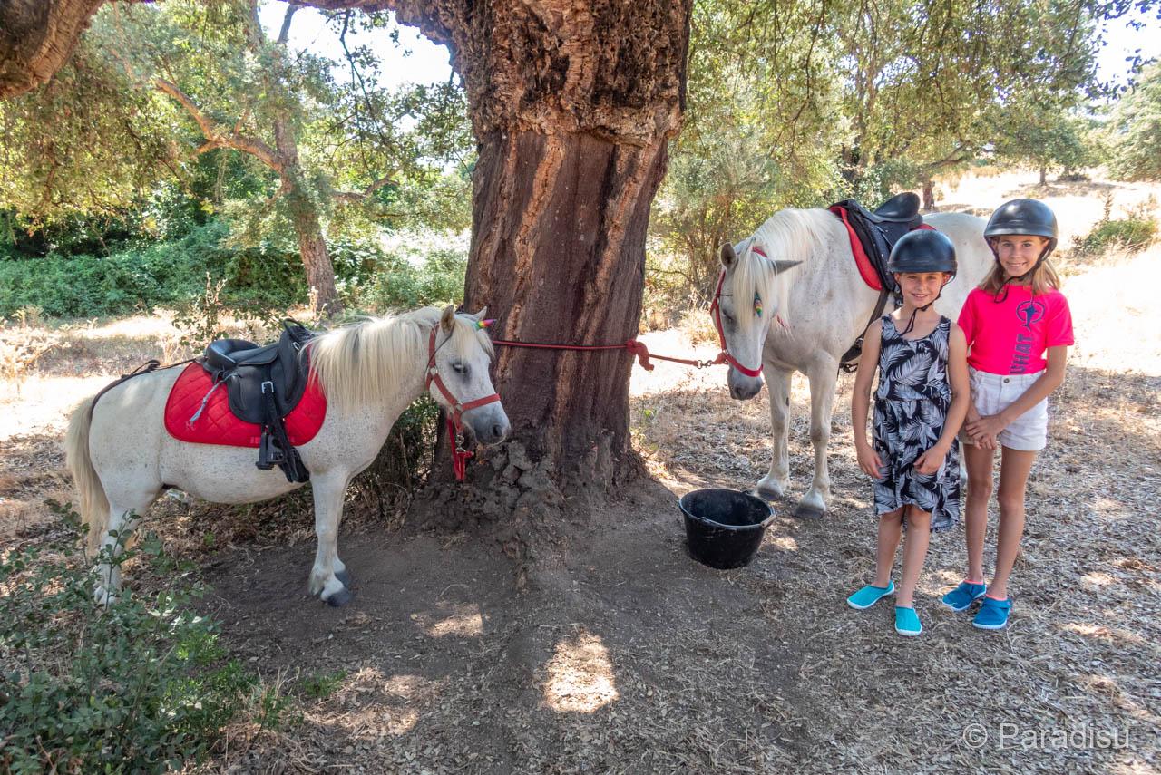 Filit'Horse