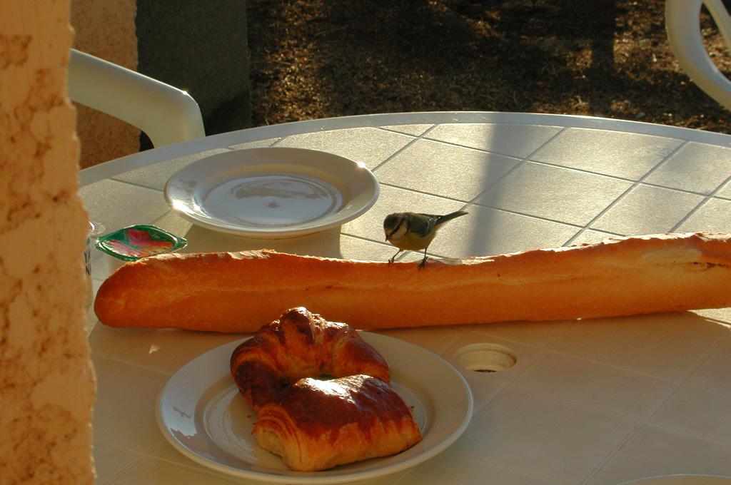 Korsika Frühstück