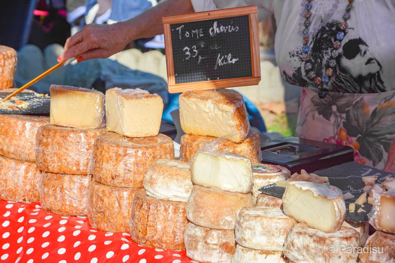Korsika Markt Korsischer Käse