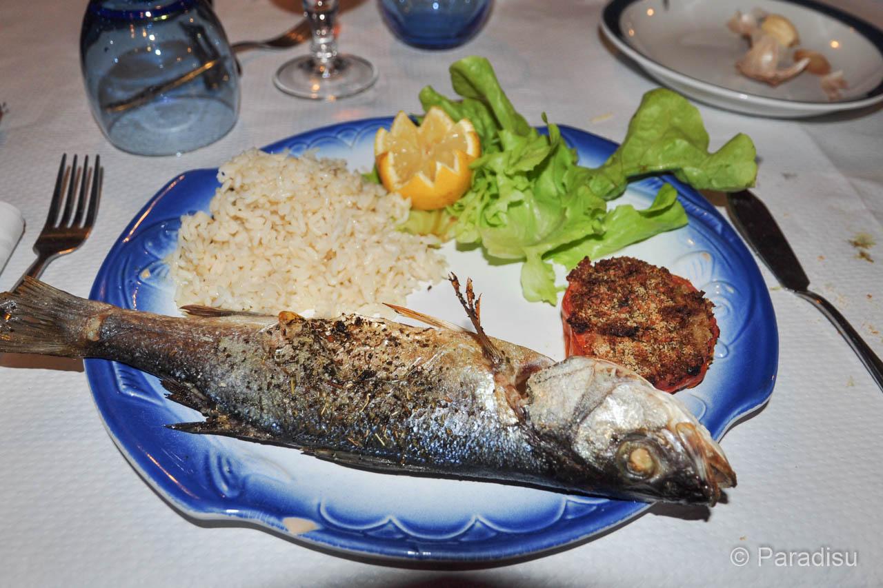 Fisch Wolsbarsch - Loup de Mer