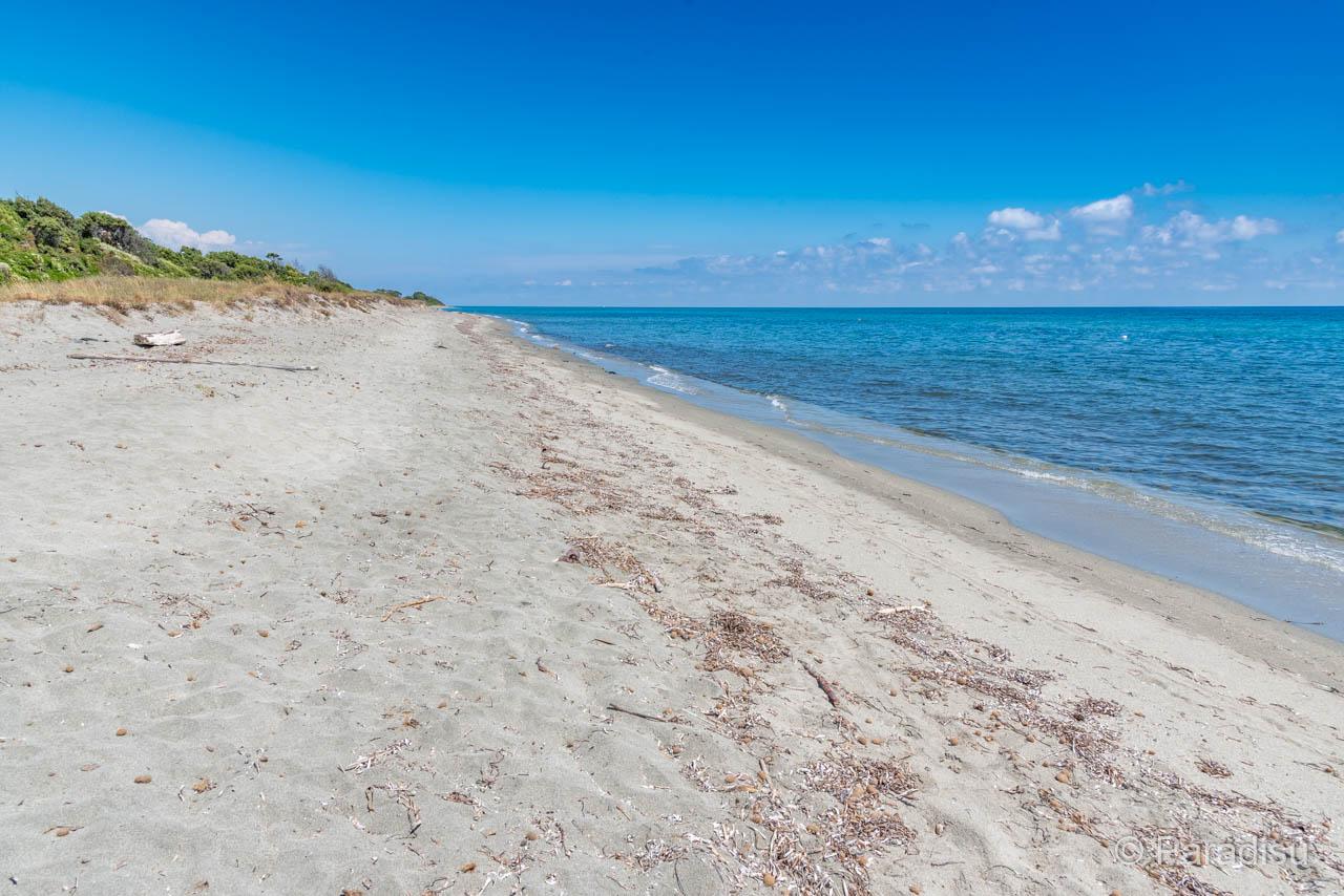 Strand Von Fiorentine