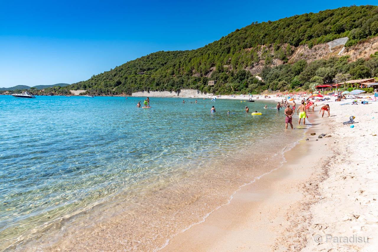 Strand Von Cannella