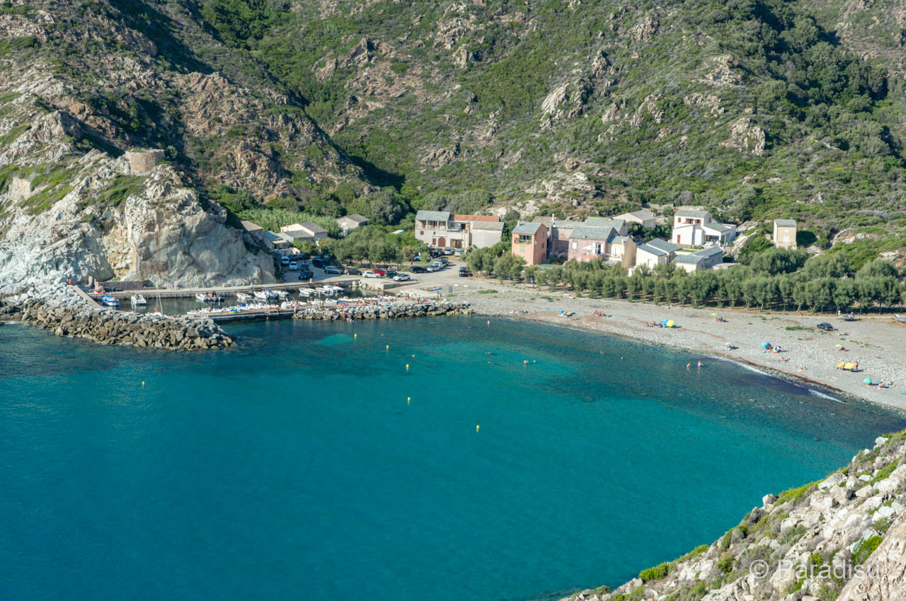 Strand Von Giottani