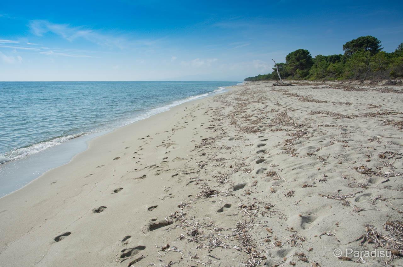 Strand Von Pinia