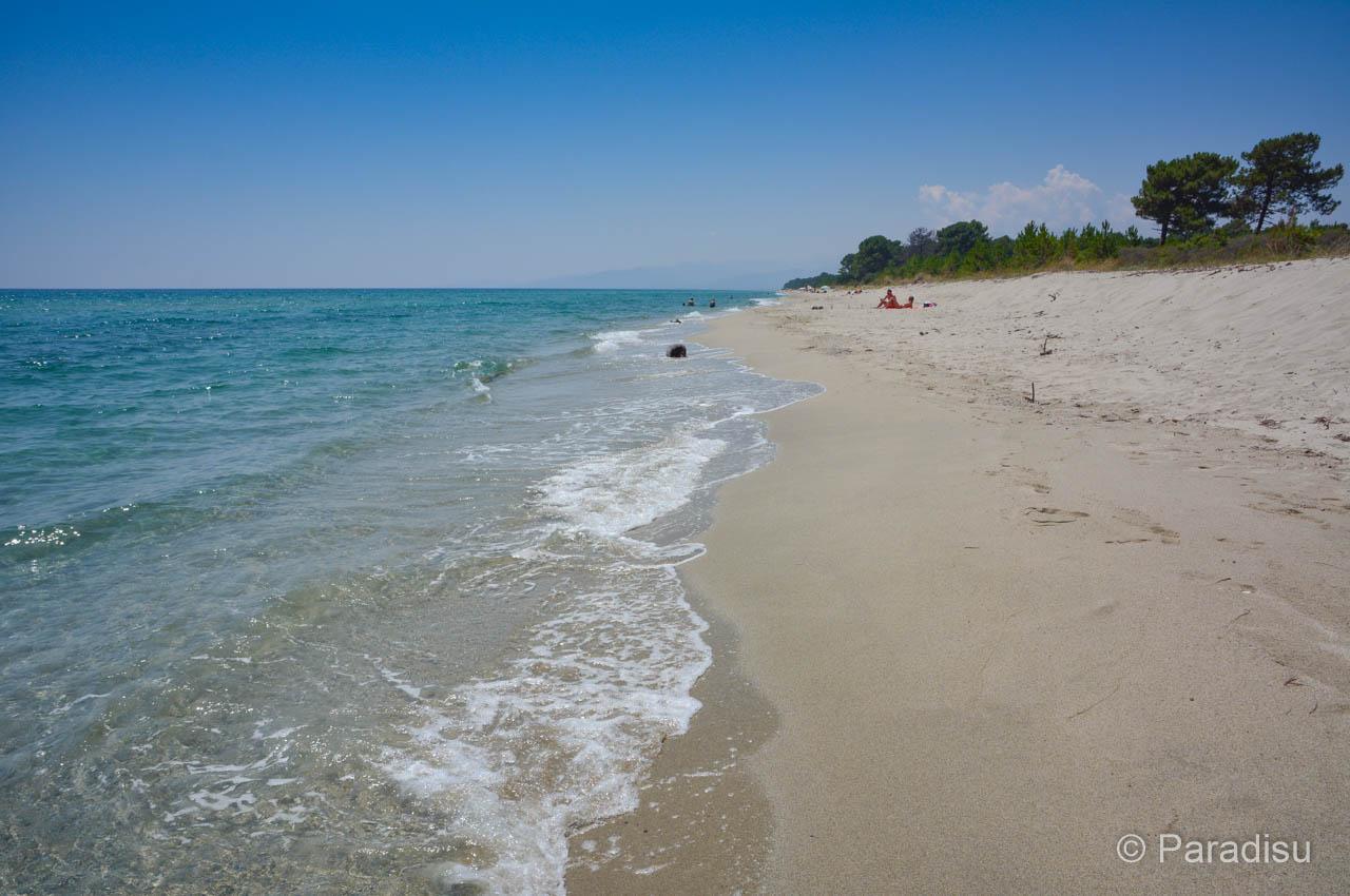 Strand Von Pinia Ghisonaccia
