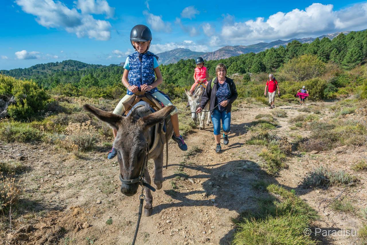Alta Rocc Anes - Wandern mit EselAlta Rocc Anes - Wandern mit Esel