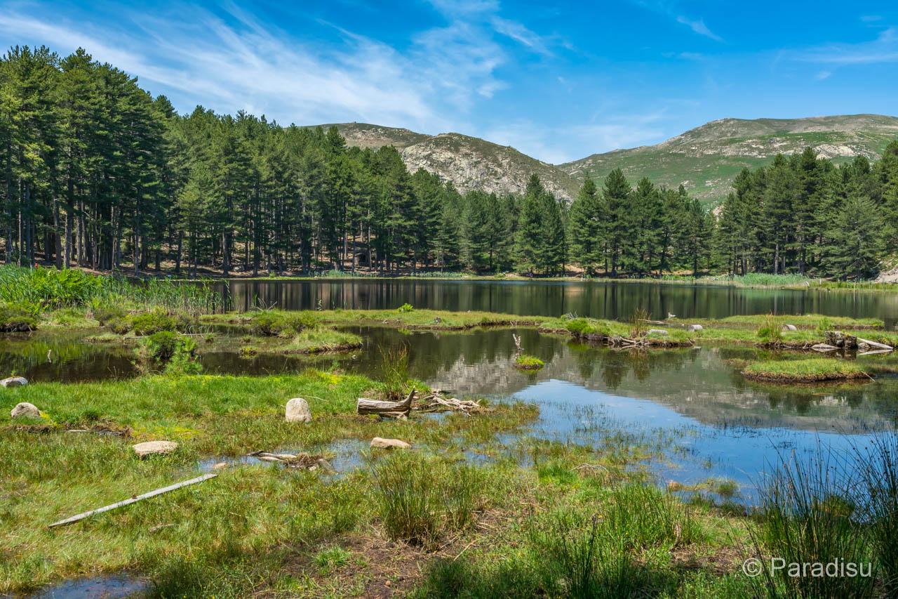 Lac De Creno - Crenosee