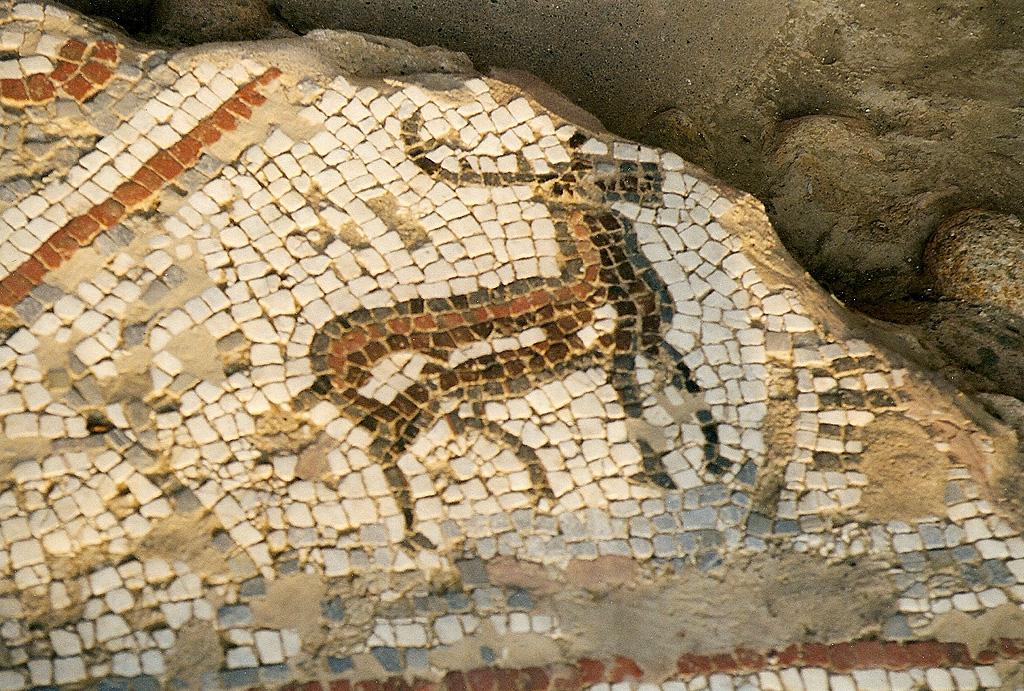 Römische Mosaike Auf Korsika