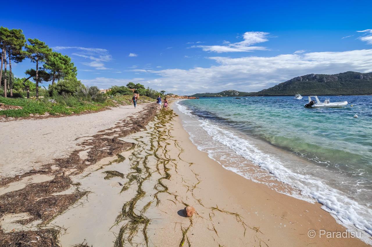 Strand Von Benedettu