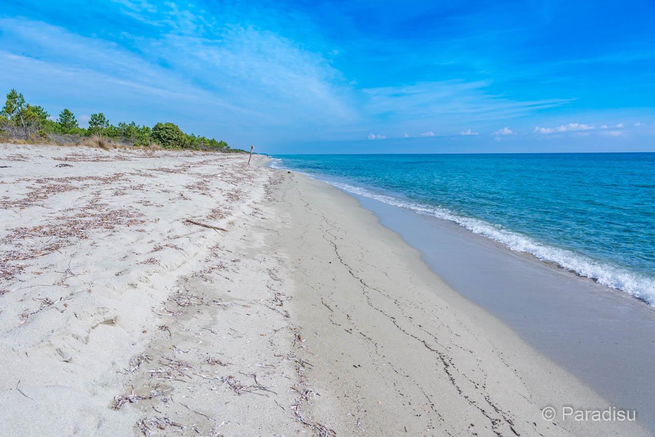 Strand Von Pinia Bei Ghisonaccia