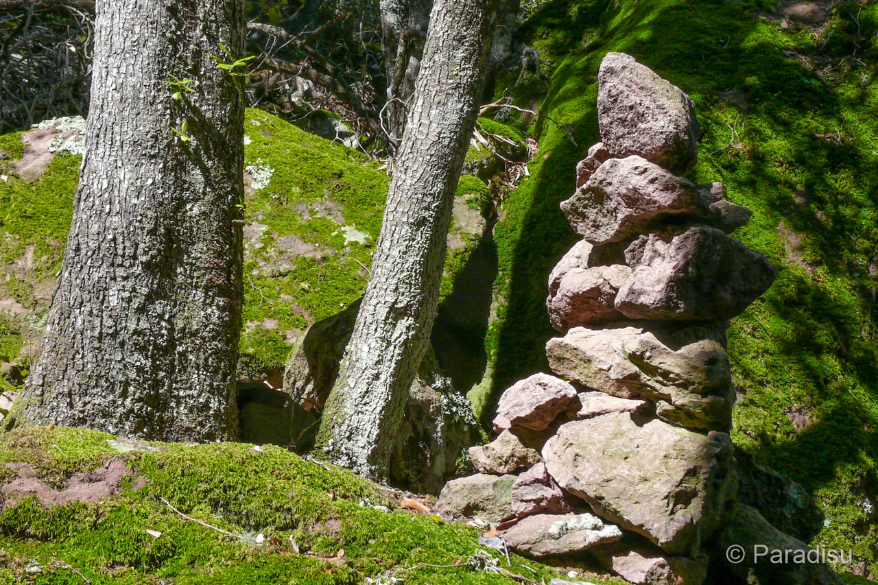 Wanderung Punta Castellucciu Und Monte Senino