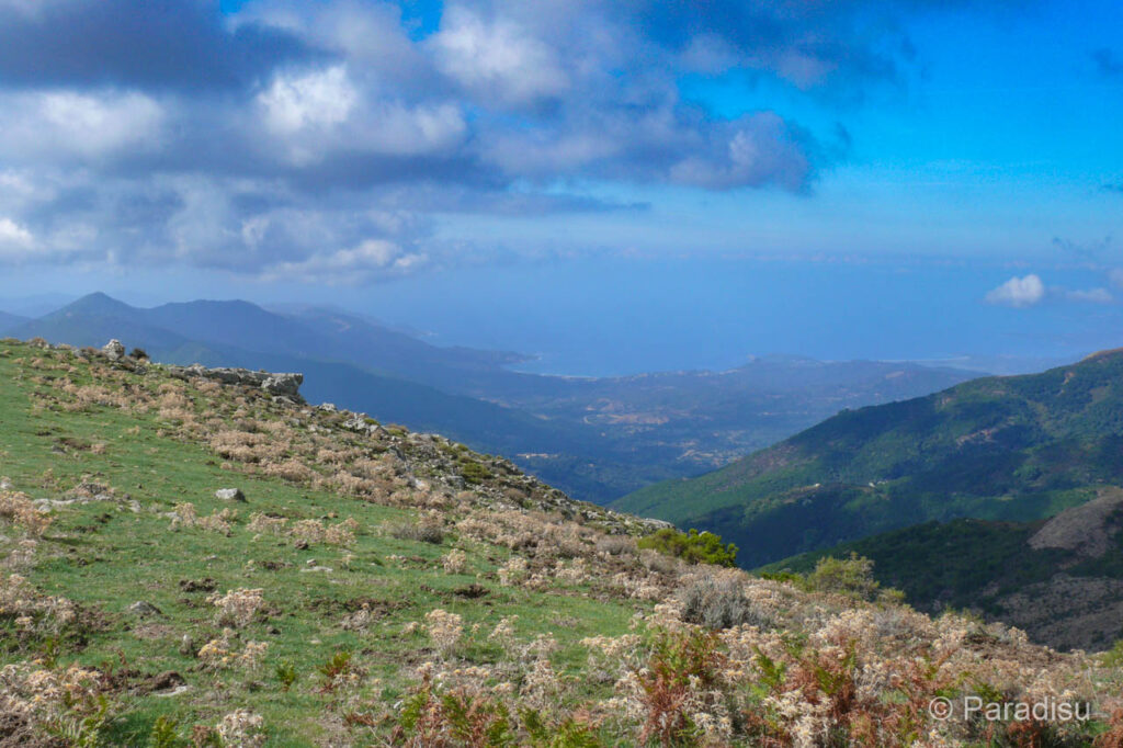 Wanderung auf die Punta Sant'Eliseo